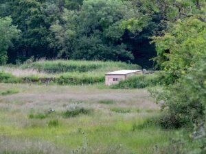 John Wilson Hide, Fell End