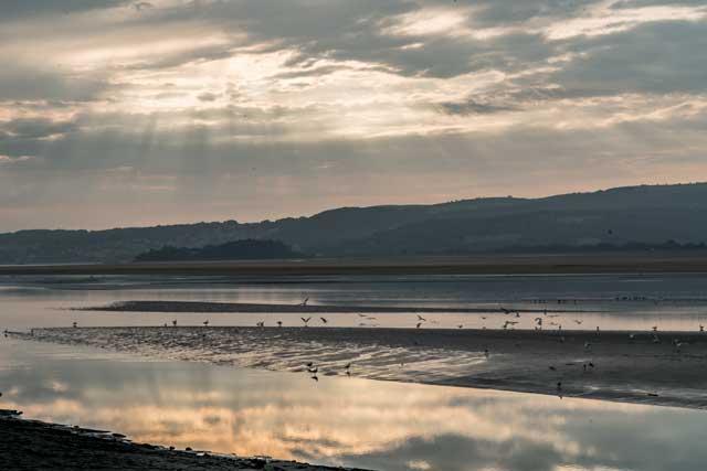Kent Estuary